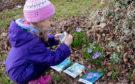 Mały Przyrodnik – zasady