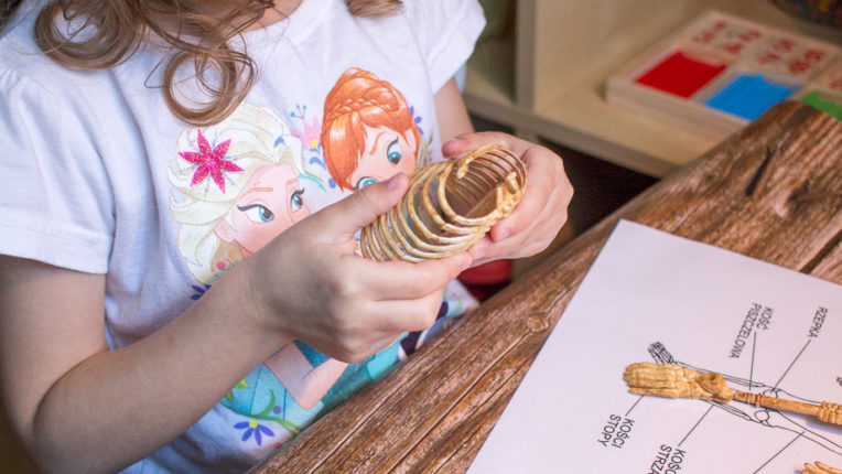 Moje ciało – czerwiec Montessori