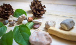 Terapia inspirowana naturą